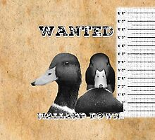 Wanted Duck - Mallard Down by mallarddown