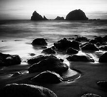 Seal Rocks by deevee