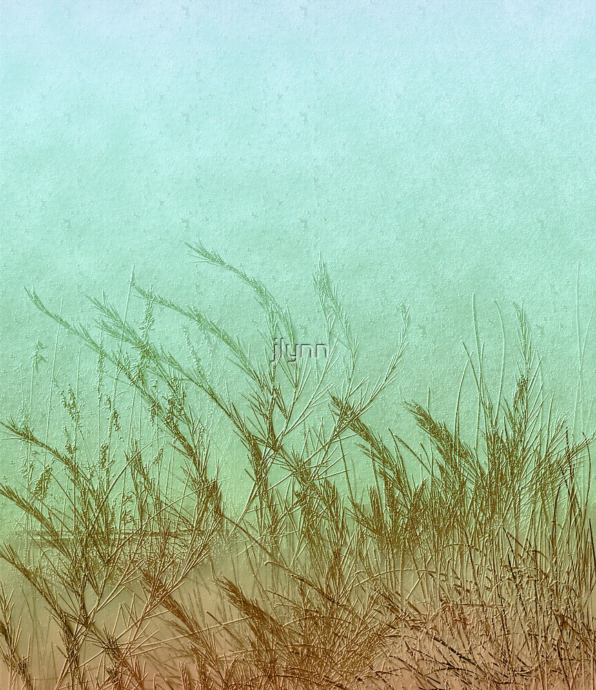 Sea Me by jlynn