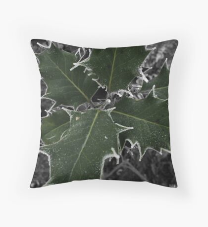 Selective Colour Holly and Frost Throw Pillow