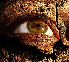 WOOD EYE??? YES EYE WOOD by Elizabeth Burton