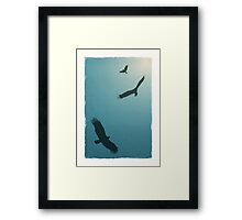 As Free as a Bird   Blue Framed Print