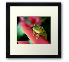 """A Frog's """"Point"""" of View Framed Print"""