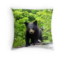 Canadian Bear Cub  Throw Pillow