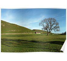 Pasture Land at Thorpe, Derbyshire Poster