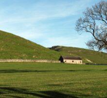 Pasture Land at Thorpe, Derbyshire Sticker