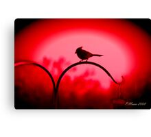 The Color is Red Canvas Print