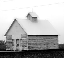 Iowa Farm by Jessica Kruer