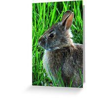 Little Bunny Foo Foo Greeting Card