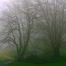 Foggy Bridge by Robin D. Overacre