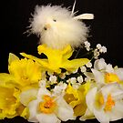 Fluff In Flowers by Maria Dryfhout