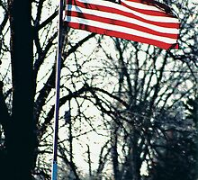 Flying Proud by Lisa Bianchi
