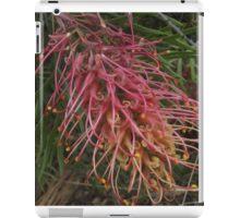 WA flowers  Robyn Gordon iPad Case/Skin