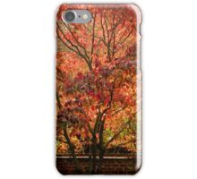 The Beauty of Fall         ^ iPhone Case/Skin