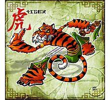 Tai Chi Tiger Photographic Print