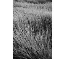 Texture series Photographic Print