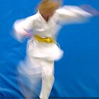 Tae Kwon Do-1 by twinpete