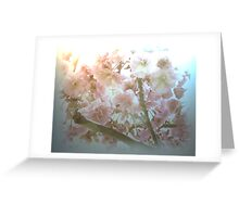 CHERRY BLOSSOMS AS THE KOI WOULD SEE THEM Greeting Card