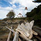 Gulf Islands I, British Columbia by toby snelgrove  IPA