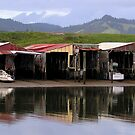 Down At The Old Boat Sheds by Andrew S