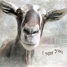 """Goat- """"I Miss You"""" ~ Greeting Card by Susan Werby"""