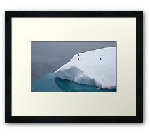 Snow storm, freezing wind ~ Life in the Antarctic goes on!! Framed Print