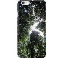 Below the canopy iPhone Case/Skin