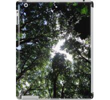Below the canopy iPad Case/Skin