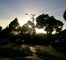 daybreak by Siobhan Drew