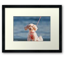 Anonymous 2 Framed Print