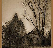 solitude by budrfli