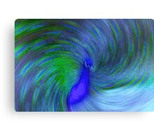 the pompous peacock Canvas Print