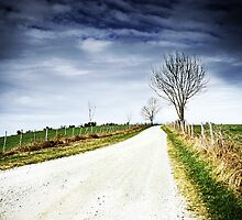 Lonely Road by Alison Cornford-Matheson