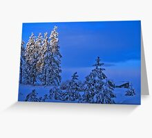 Cold Day Greeting Card