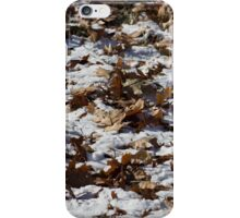 Oak Leaves on Snow iPhone Case/Skin