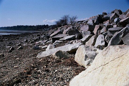 On The Rocks by carolssecrets