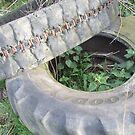 Tyres by Matt Roberts