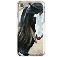 Gypsy Vanner Stallion iPhone Case/Skin