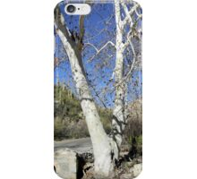 White Sycamores iPhone Case/Skin