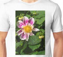 Pink Dahlia Close-up Unisex T-Shirt