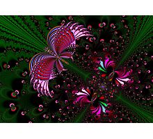 Fractal Red Butterfly Photographic Print