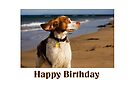 Birthday Card No 8 by Helen Green