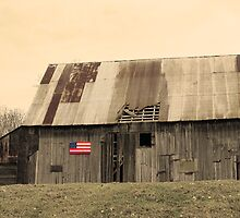 USA Barn by Christine King