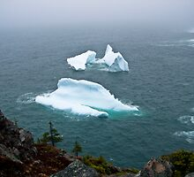 Bergs At Cuckold's Cove by JaneTara Oliver