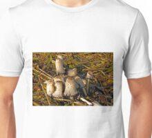 Shaggy Ink Caps - (Coprinus comatus) Unisex T-Shirt