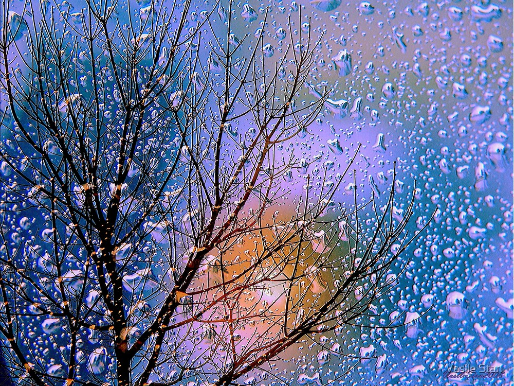 The colours of rain - spring blue by Vasile Stan