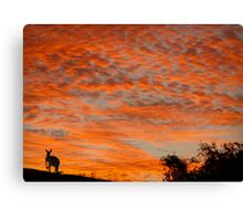 I know you're there ! Canvas Print