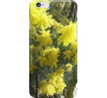 Australian Wattle iPhone Case/Skin