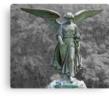The Angel of the Waters Canvas Print