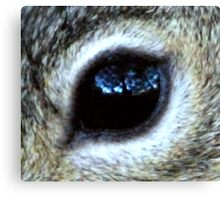Papa's Window To The Soul Canvas Print